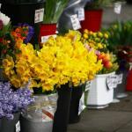 Der Columbia Road Flower Market in London