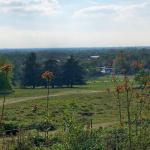 Richmond Park Guide