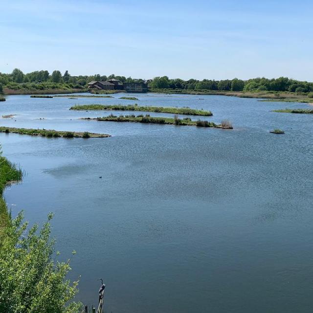 Das London Wetland Centre